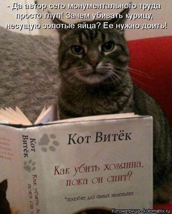 kotomatritsa_R (561x700, 346Kb)