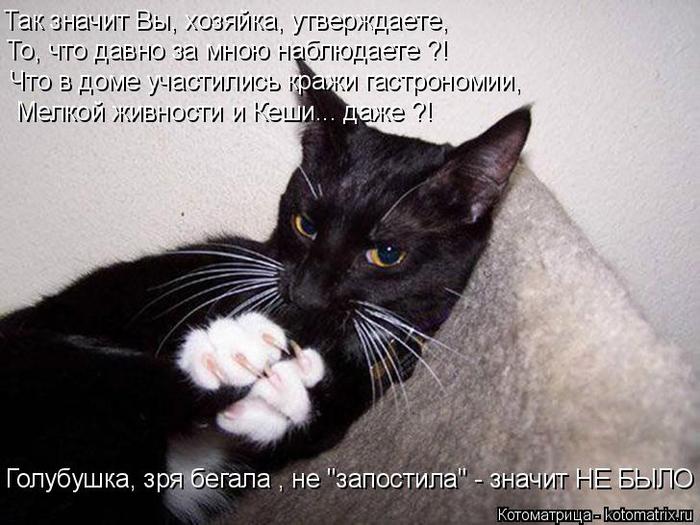 kotomatritsa_7 (700x525, 287Kb)