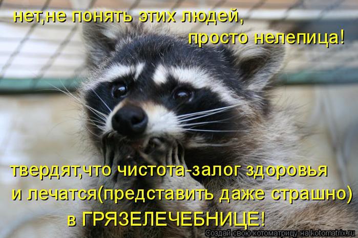 kotomatritsa_8l (700x466, 385Kb)