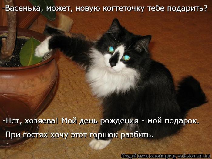 kotomatritsa_m (2) (700x524, 349Kb)
