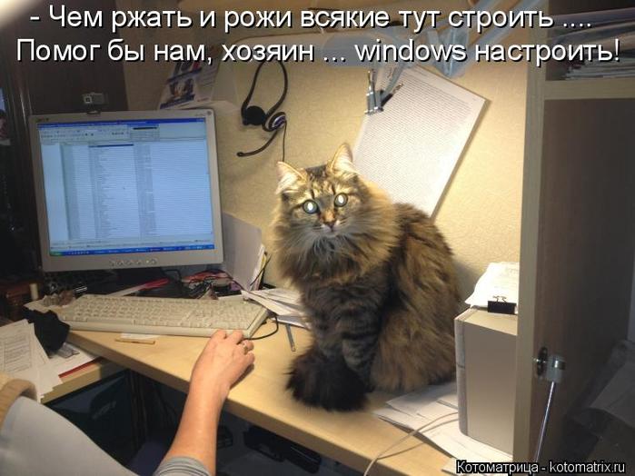 kotomatritsa_Y (700x524, 326Kb)