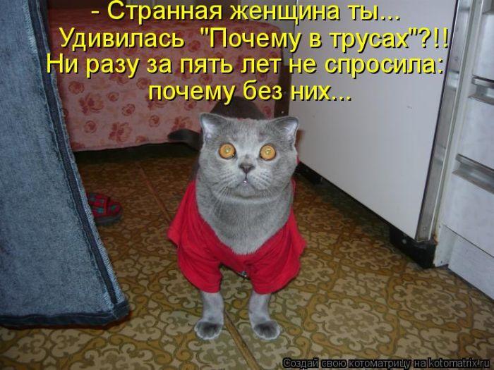 r2_www.catsmob.com_cm_20121221_02197_008_5e020383 (700x525, 273Kb)