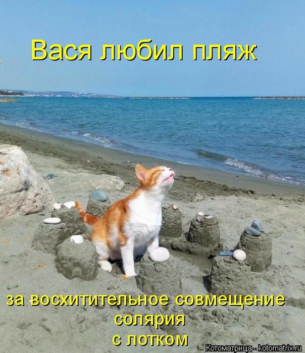 kotomatritsa_ga (604x700, 394Kb)
