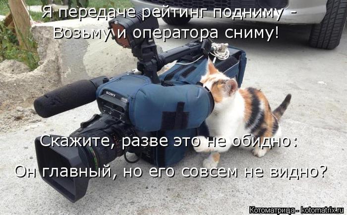 kotomatritsa_I (700x434, 295Kb)