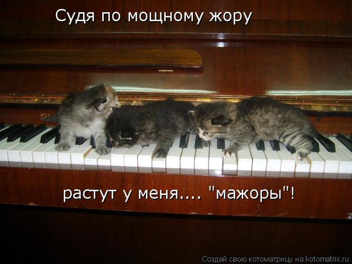 kotomatritsa_9j (700x524, 312Kb)