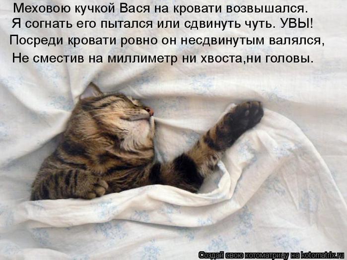 kotomatritsa_le (700x524, 329Kb)