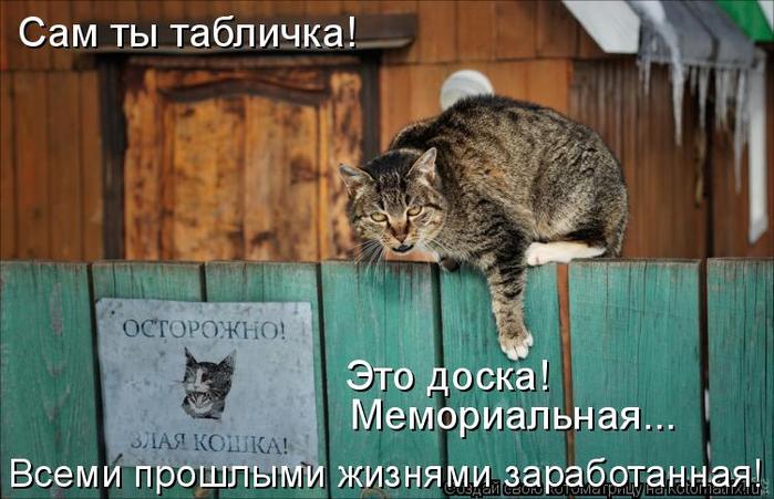 kotomatritsa_R (700x451, 334Kb)