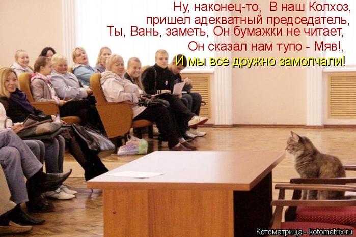 kotomatritsa_p (1) (700x466, 358Kb)