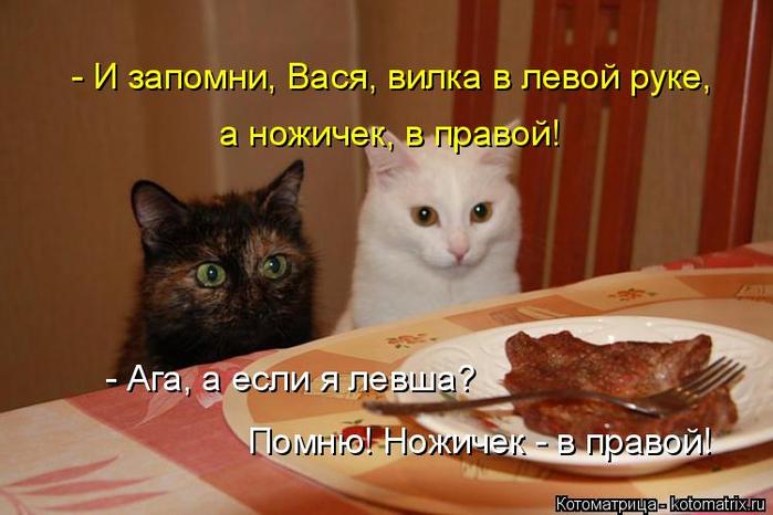 kotomatritsa_Y (1) (700x466, 302Kb)