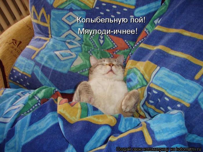 kotomatritsa_YS (700x524, 411Kb)