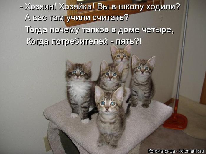 kotomatritsa_T (700x524, 266Kb)