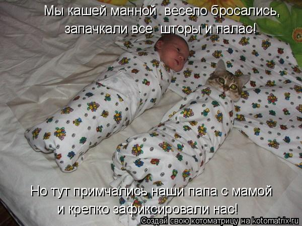 kotomatritsa_h (1) (600x450, 194Kb)