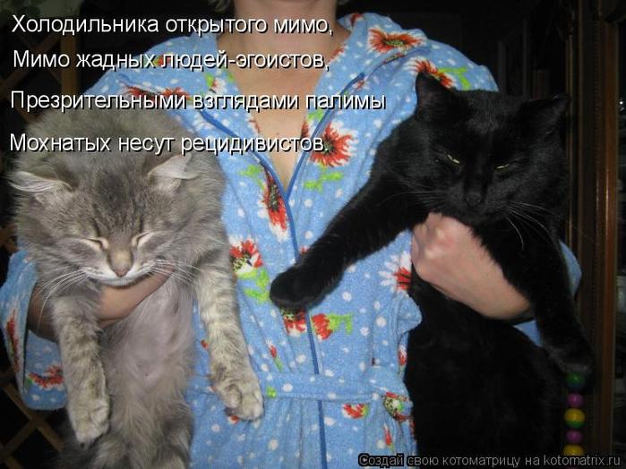 kotomatritsa_V9 (700x524, 358Kb)