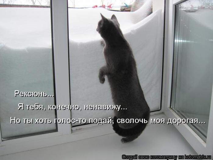 kotomatritsa_j (700x524, 190Kb)