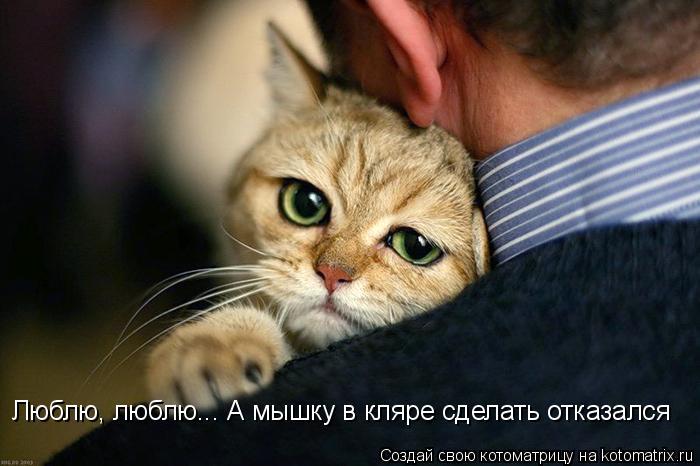 kotomatritsa_S (700x466, 187Kb)