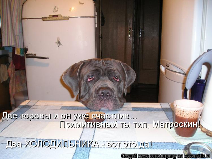 kotomatritsa_n (700x524, 323Kb)