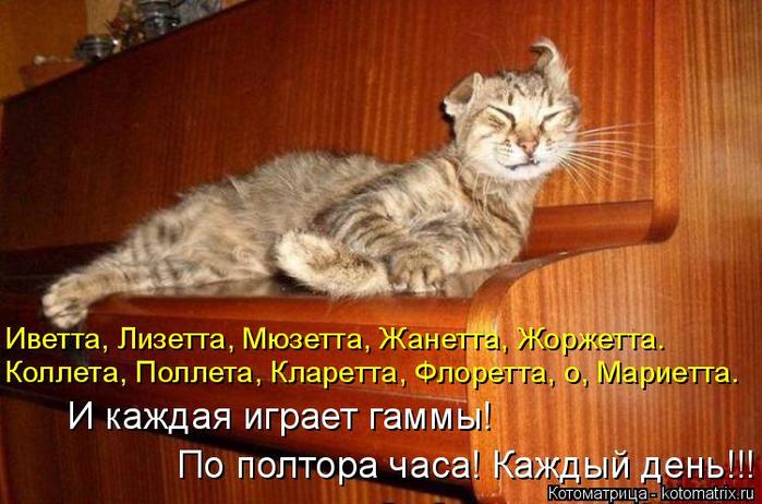 kotomatritsa_6 (700x462, 379Kb)