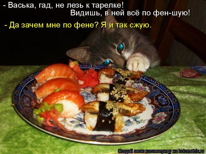 kotomatritsa_Q (700x522, 392Kb)