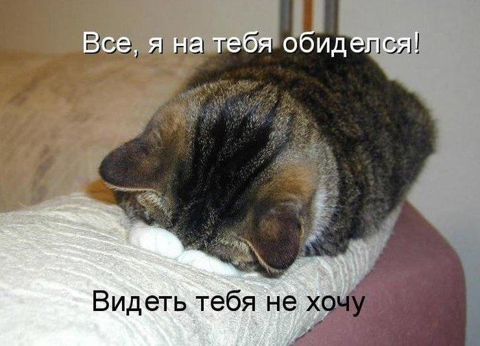 2714816_ya_obidelas_10_27135920 (700x505, 58Kb)