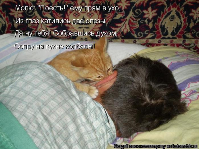 kotomatritsa_fU (700x524, 382Kb)