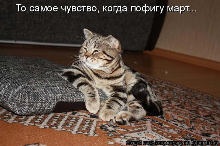 kotomatritsa_-6C (700x466, 295Kb)