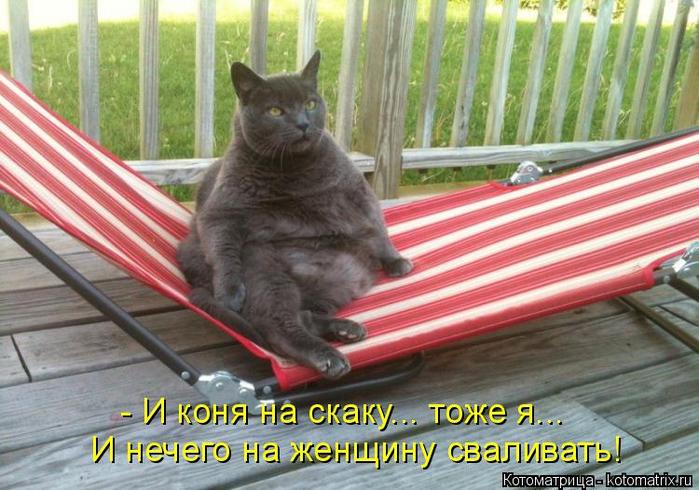 kotomatritsa_B7 (700x490, 403Kb)