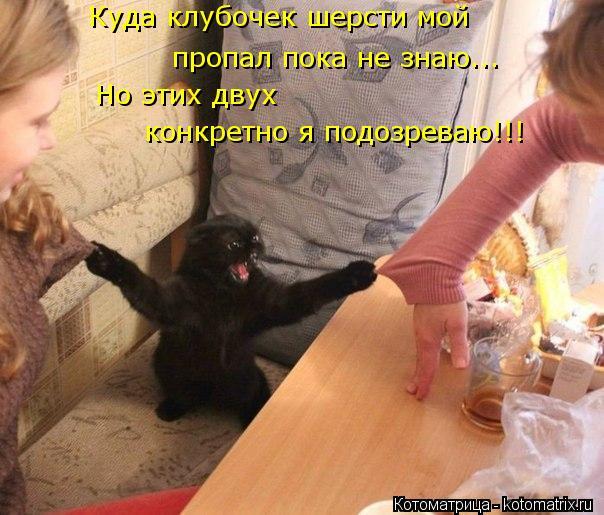 kotomatritsa_7i (604x515, 262Kb)