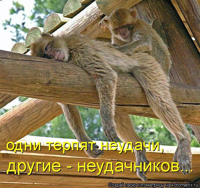 5402287_104220924_3973453_fJ (700x658, 110Kb)