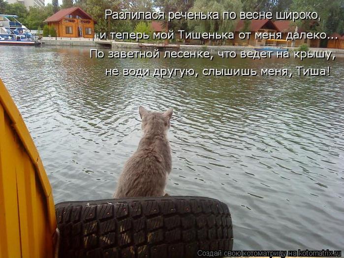 kotomatritsa_J (700x524, 423Kb)