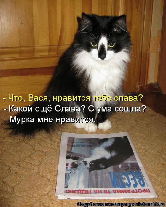 kotomatritsa_5V (560x700, 387Kb)