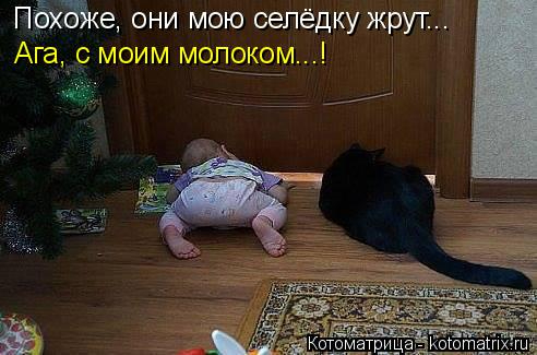 kotomatritsa_Yu (492x325, 134Kb)