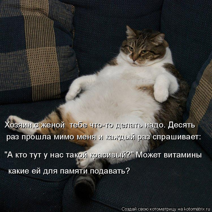 kotomatritsa_T0 (700x700, 495Kb)
