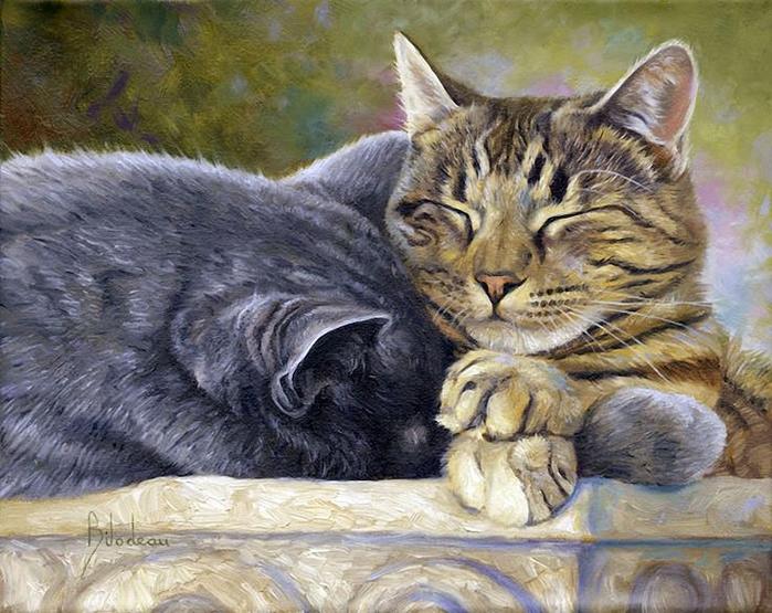 13cf0ce7958be18ea277c254e6c78728--tabby-cats-kitty-cats (700x555, 431Kb)