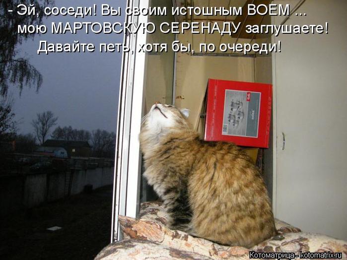 kotomatritsa_J (700x524, 340Kb)