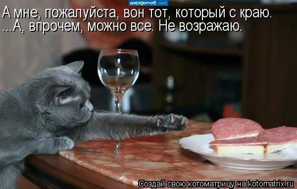 kotomatritsa_me7 (600x381, 138Kb)