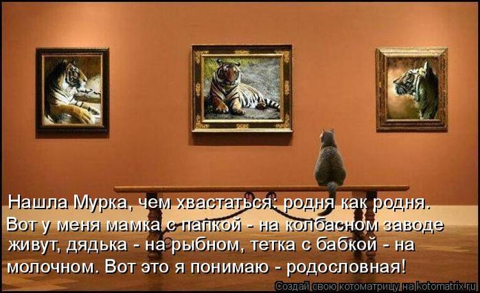 kotomatritsa_A (700x427, 327Kb)