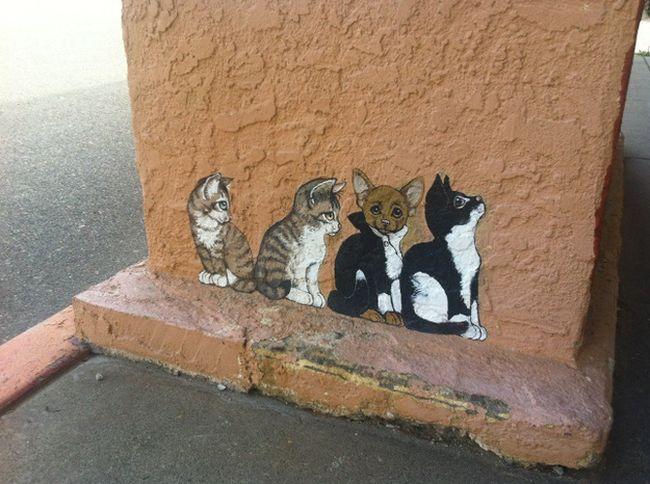 graffiti_iskusstvo_s_kotikami_v_arizonskom_gorodke_readmas.ru_09 (650x484, 192Kb)