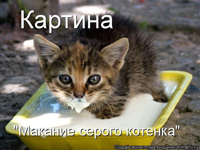 kotomatritsa_Ht (700x525, 377Kb)