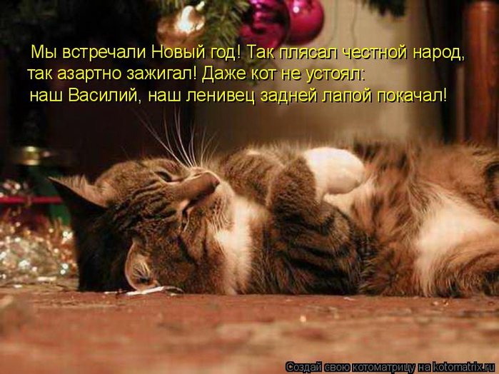 kotomatritsa_9 (700x524, 392Kb)