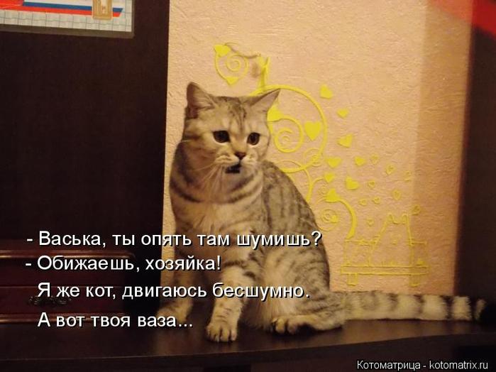 kotomatritsa_e (700x524, 298Kb)