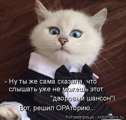 kotomatritsa_p (440x419, 98Kb)