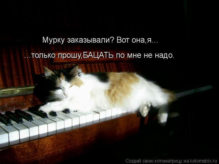 kotomatritsa_kw (700x524, 212Kb)