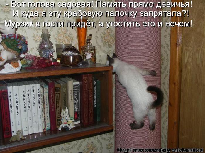 kotomatritsa_T (1) (700x524, 390Kb)