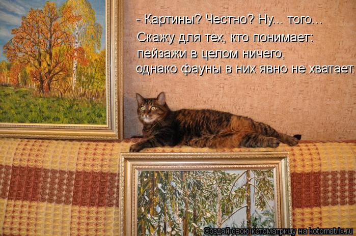 kotomatritsa_kE (700x464, 430Kb)