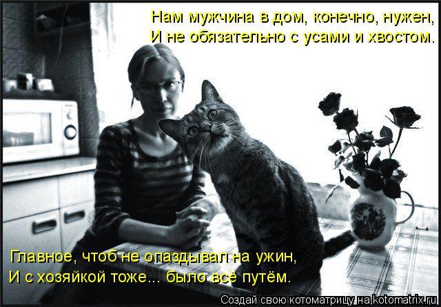 kotomatritsa_Y (640x446, 229Kb)