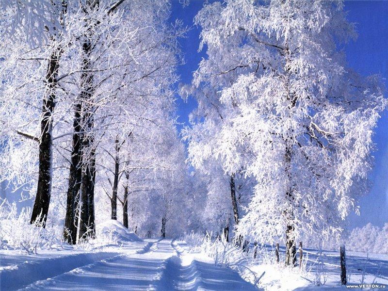 А за окном зима... F_18063871