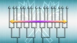 [Katekyo Hitman Reborn] Tri-ni-set 250px-Mare_Rings%27_Miracle