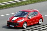 [Peugeot] 207 SW RC Th_64443_FAM_Peugeot_207_F-Racing_122_634lo