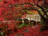Wallpaperi Th_33980_Japanese_Garden0_Royal_Roads_University3_British_Columbia_122_1011lo