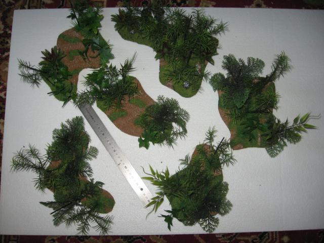 VENDU végétation luxuriante 1 Img_0348-5030489